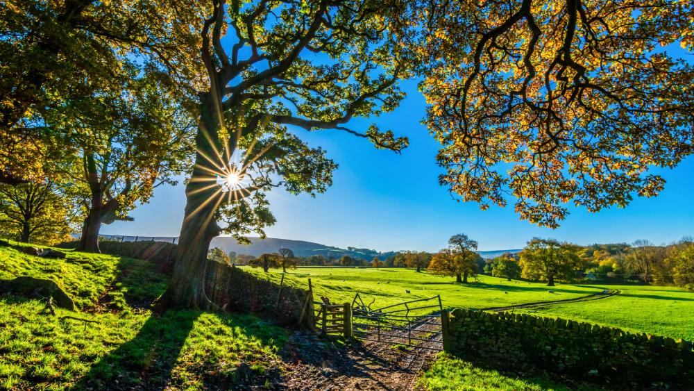 England countryside scenery wallpaper