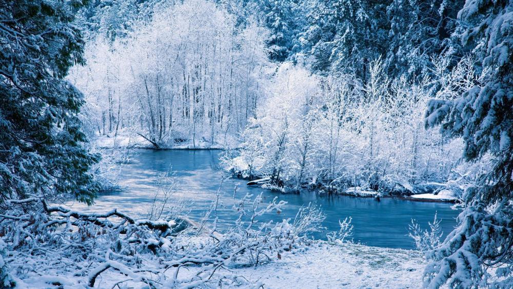 Bluish winter landscape wallpaper