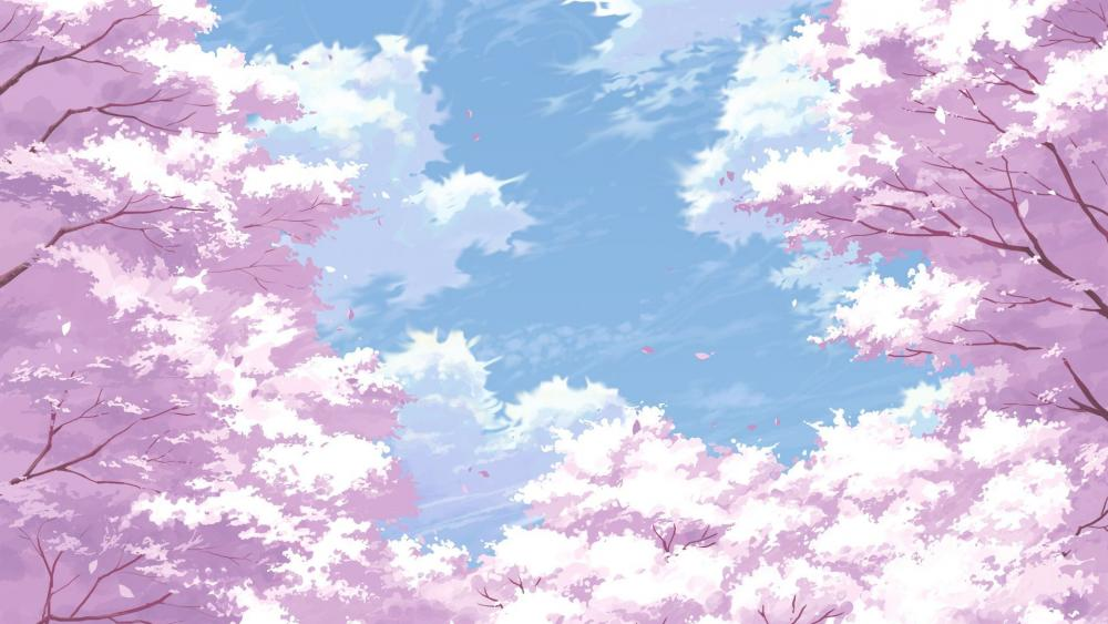 Anime cherry blossom wallpaper