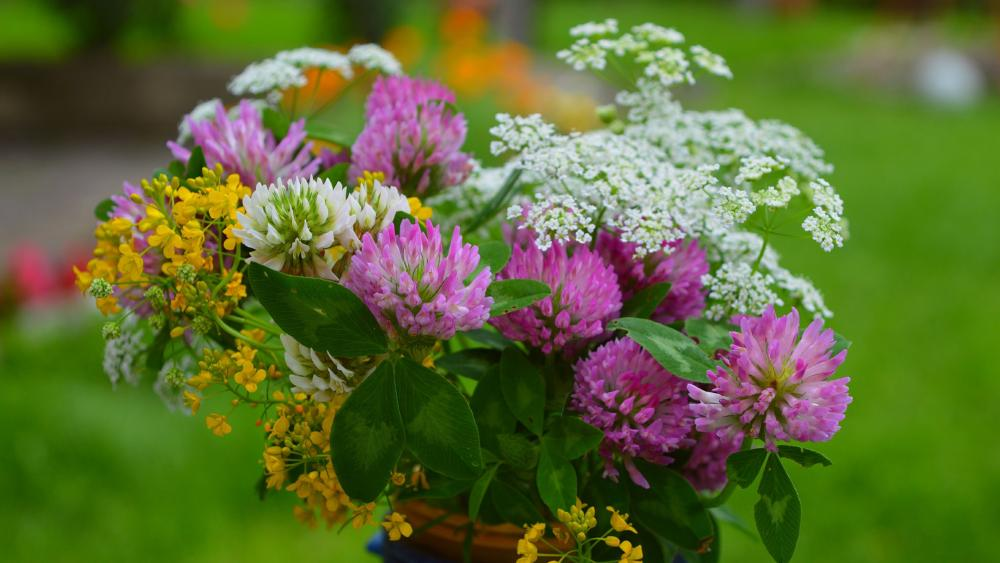 Wildflower bouquet wallpaper