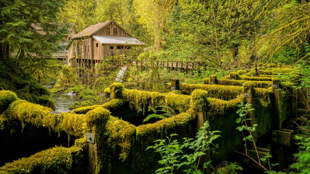 Cedar Creek Grist Mill wallpaper