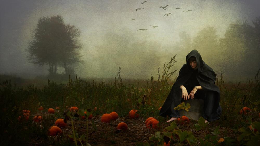 The pumpkin whisperer wallpaper