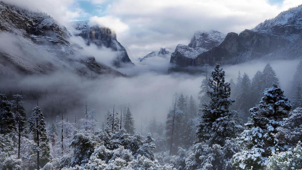 Winter fog in the Yosemite Valley wallpaper