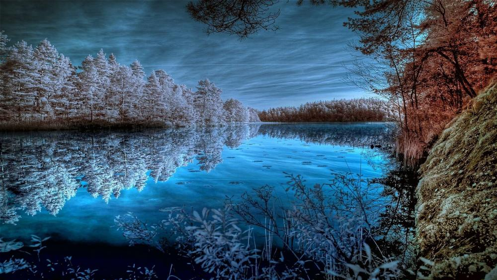 Half autumn, half winter wallpaper