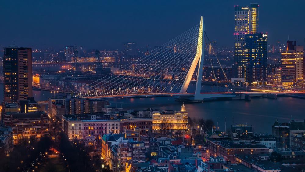Erasmus Bridge at dusk wallpaper