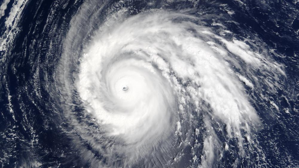 Typhoon Higos wallpaper