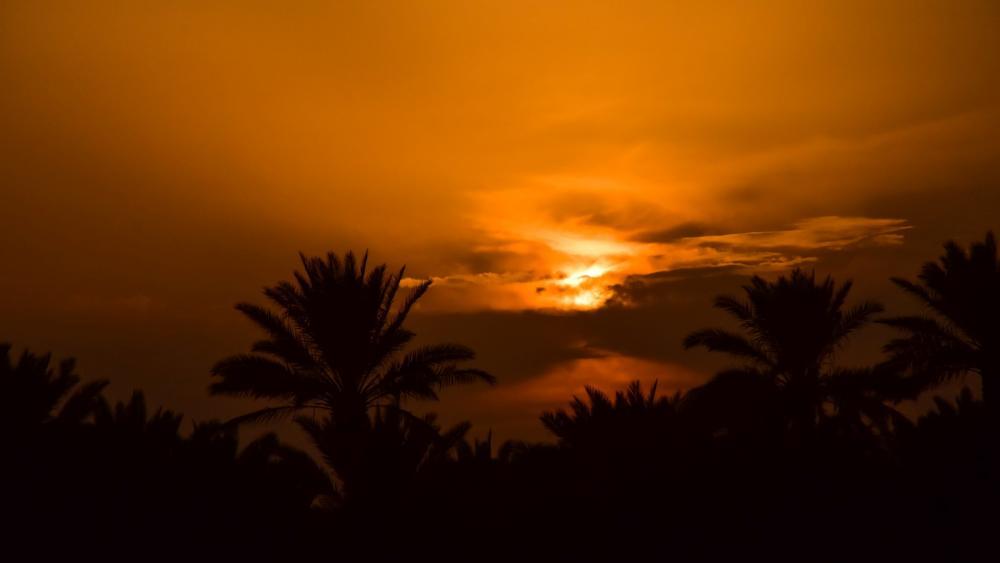 Kerbela sunset wallpaper