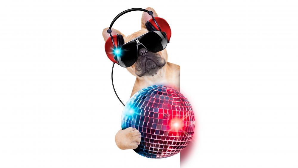 French bulldog DJ wallpaper