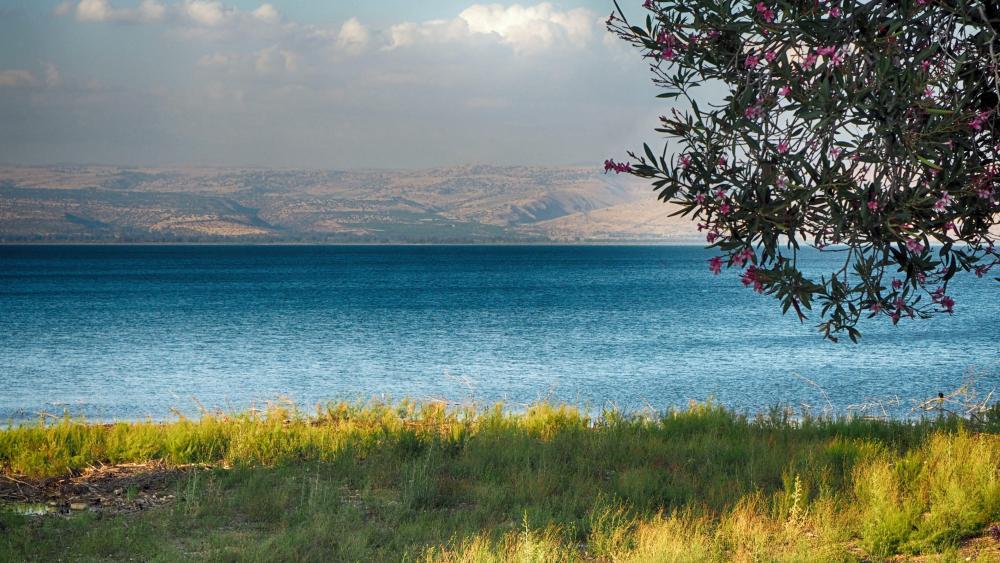 Sea of Galilee wallpaper