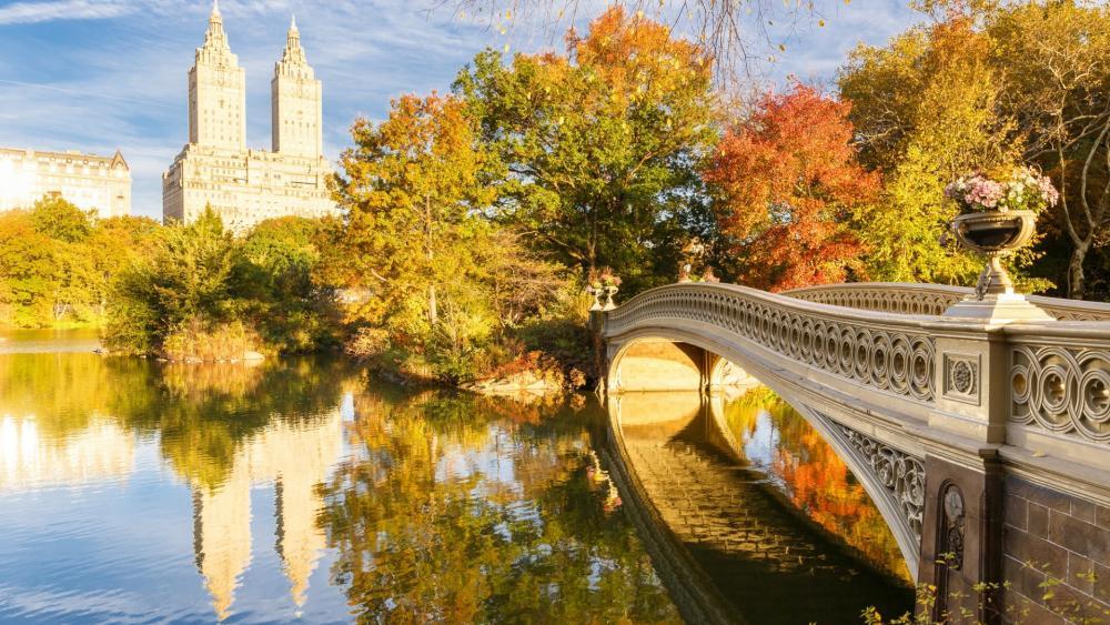 Bow Bridge Central Park wallpaper
