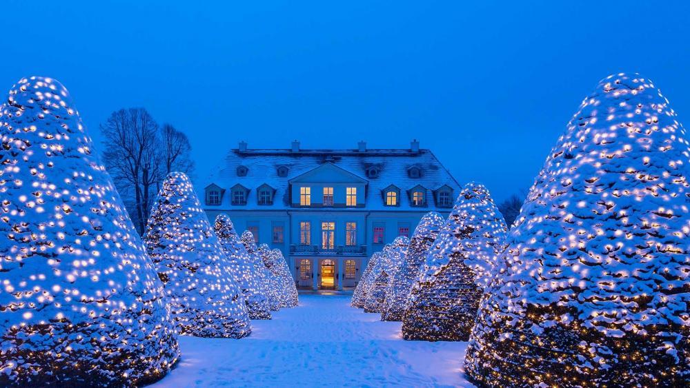 Wackerbarth castle in the Christmas season wallpaper