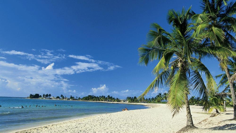 Tropical beach in Cuba wallpaper