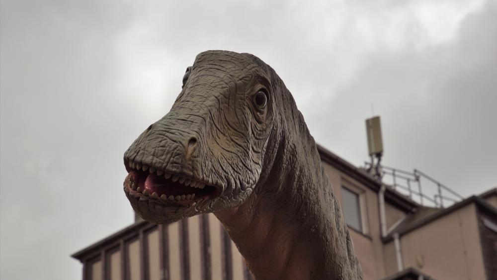 Dinos in Dino City Bochum wallpaper