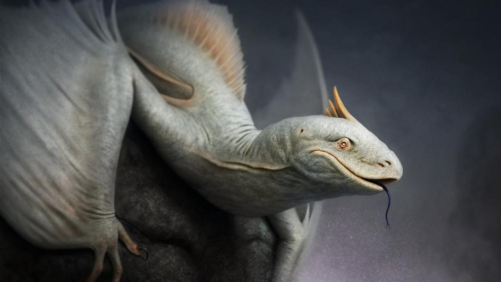 Realistic dragon wallpaper
