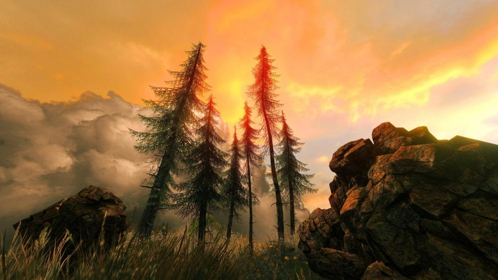 Fir trees between boulders under cloudy sky during sunset wallpaper