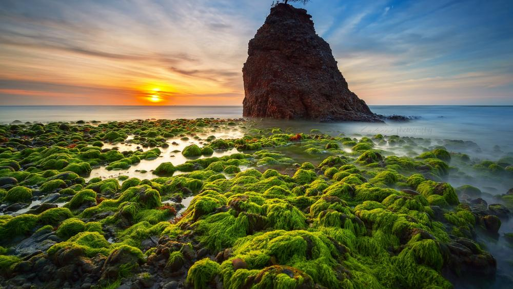 Batu Luang beach wallpaper