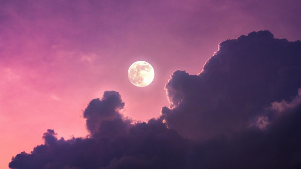 Purple moonlight wallpaper