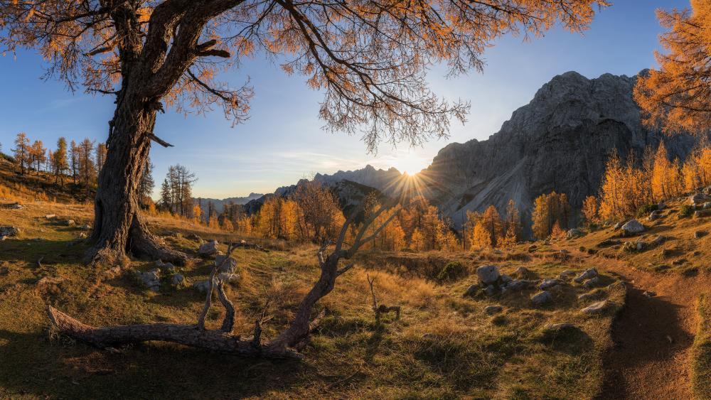 Julian Alps at fall wallpaper