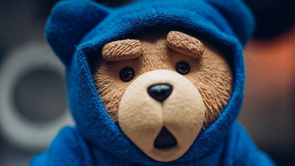 Surprised Teddy bear in blue hoodie wallpaper