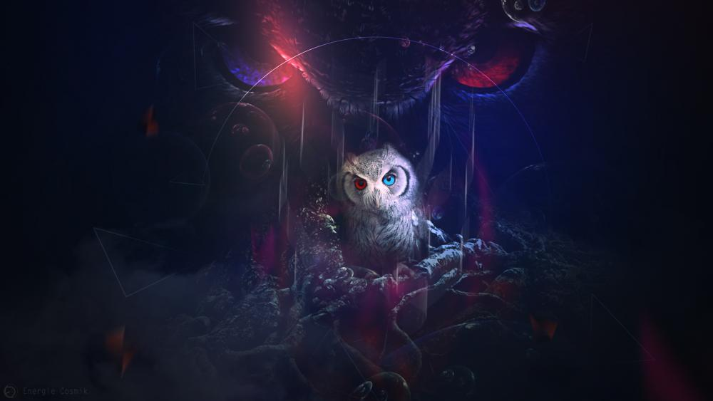 Owl with different colored eyes wallpaper