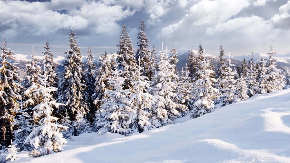 uhd-8k-wallpaper-snow-covered-mountains wallpaper