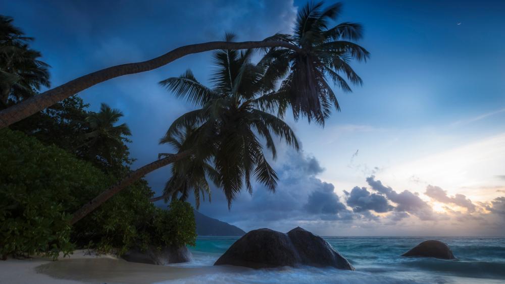 Seychelles twilight wallpaper