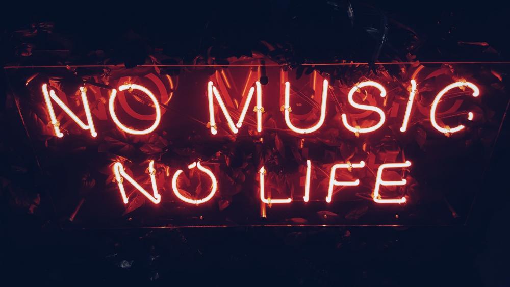 No music no life wallpaper