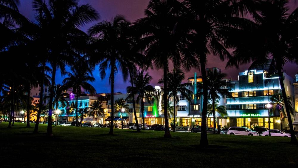 Miami by night wallpaper