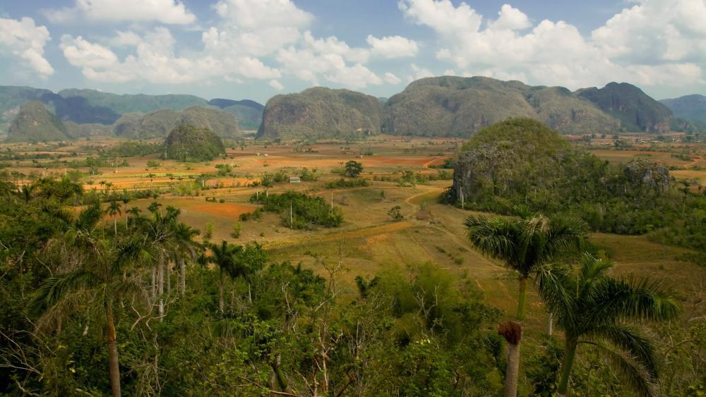 Viñales Valley in the Pinar del Río Province of Cuba wallpaper