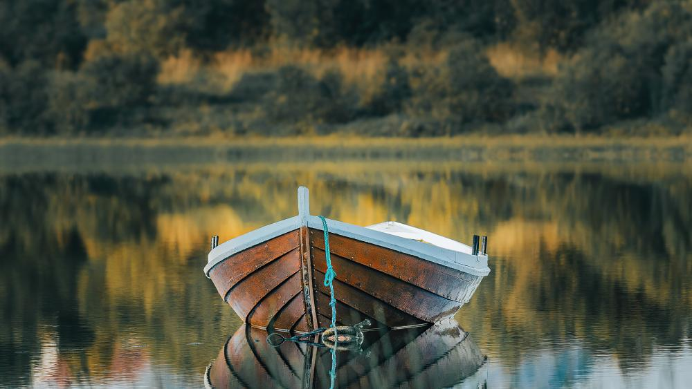 Boat in the nature wallpaper