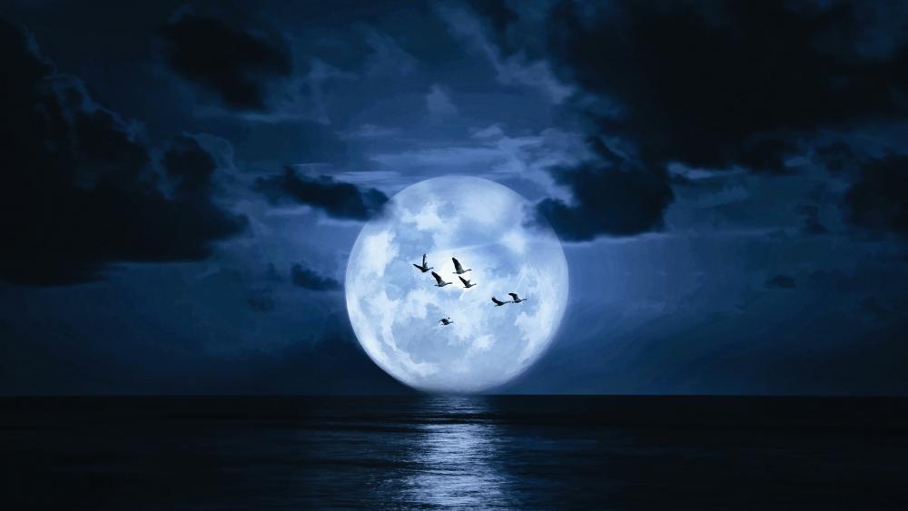 Flying birds at full moon wallpaper