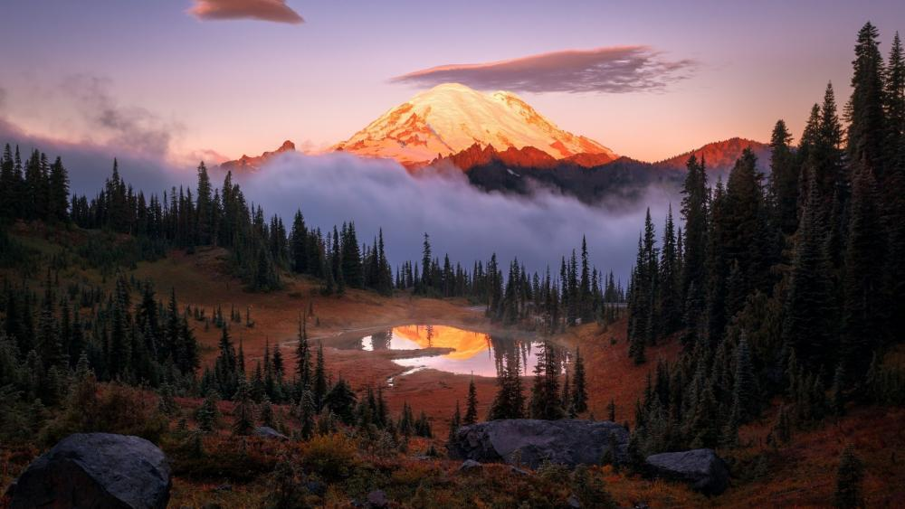 Mt. Rainier wallpaper