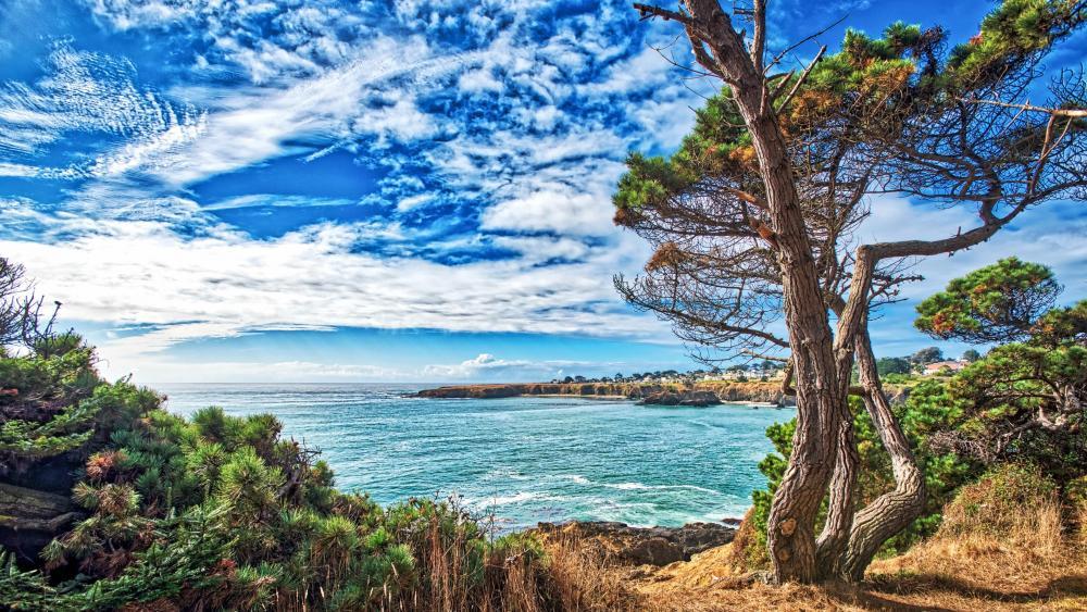 California coastline wallpaper