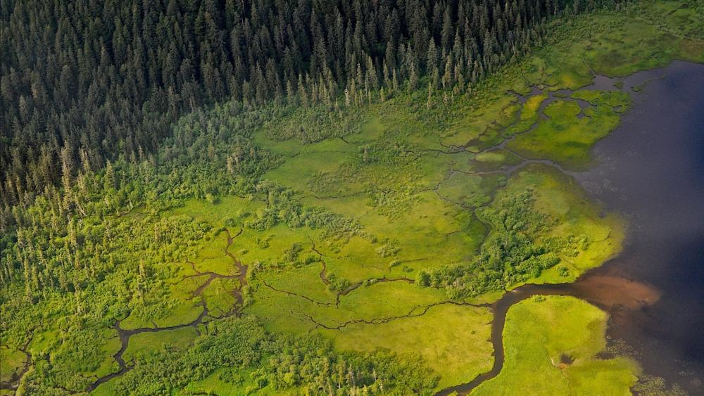McKinley River, Denali National Park wallpaper