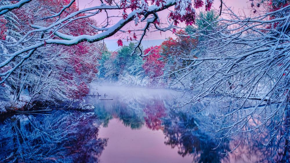 Snowy autumn wallpaper