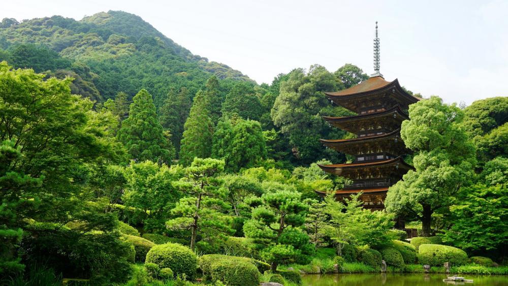 Rurikoji Temple, Kozan park, Japan wallpaper