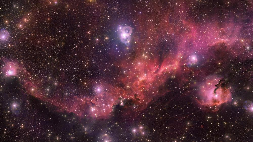 The Seagull Nebula wallpaper