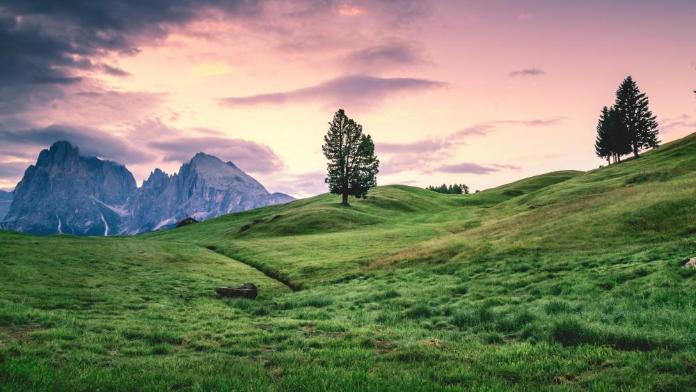 Seiser Alm (Alpe di Siusi) wallpaper