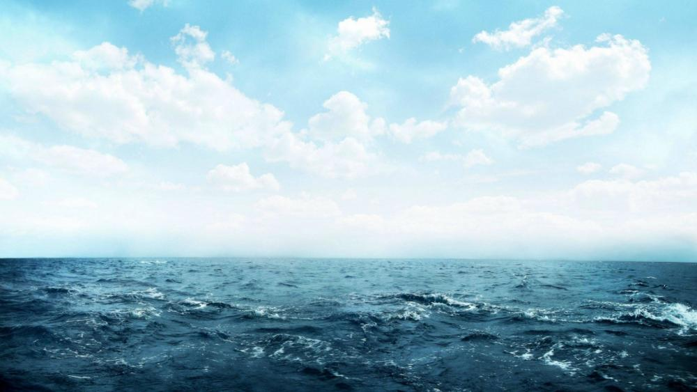 sea nsture  wallpaper