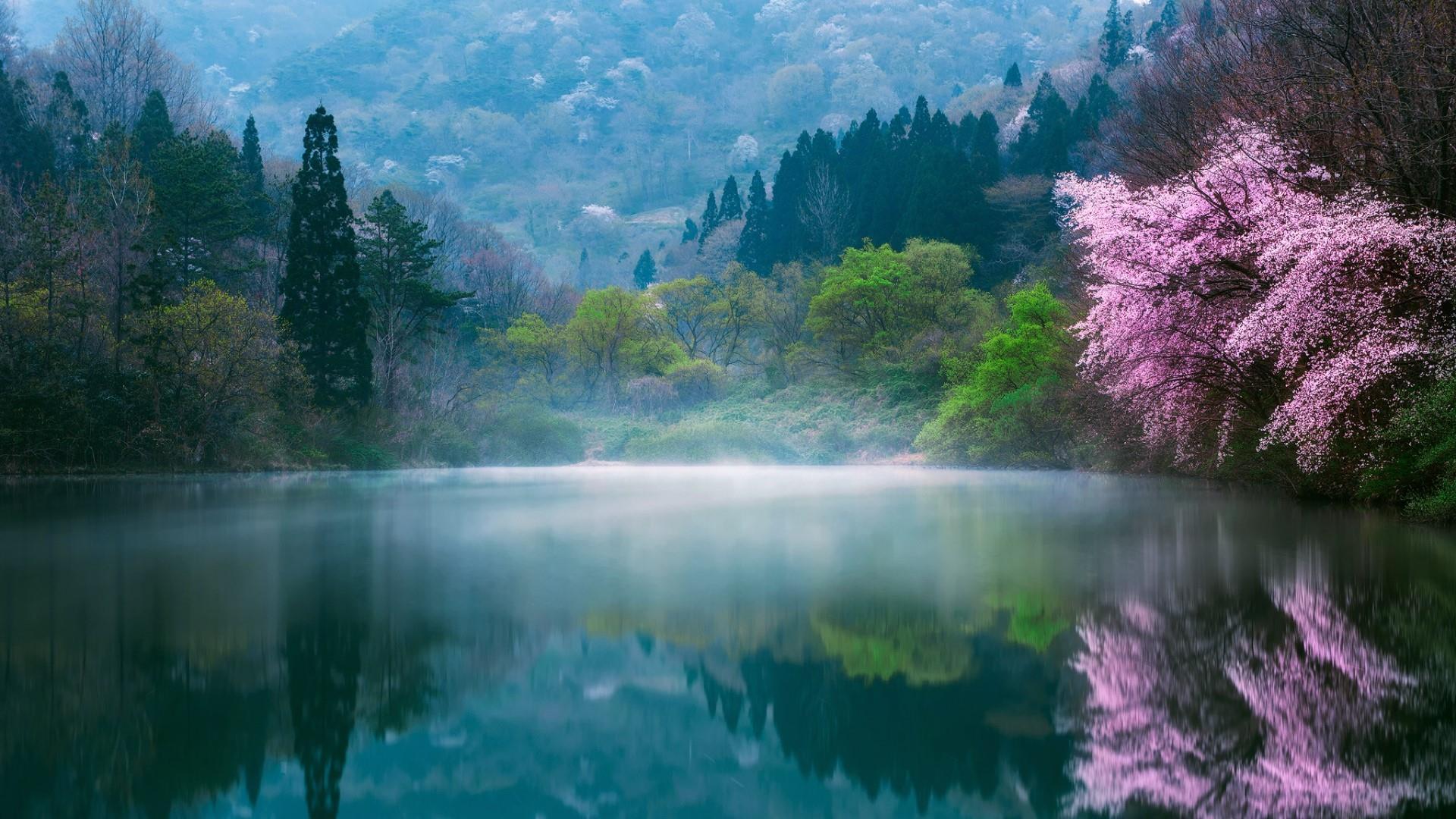 Lake in South Korea wallpaper