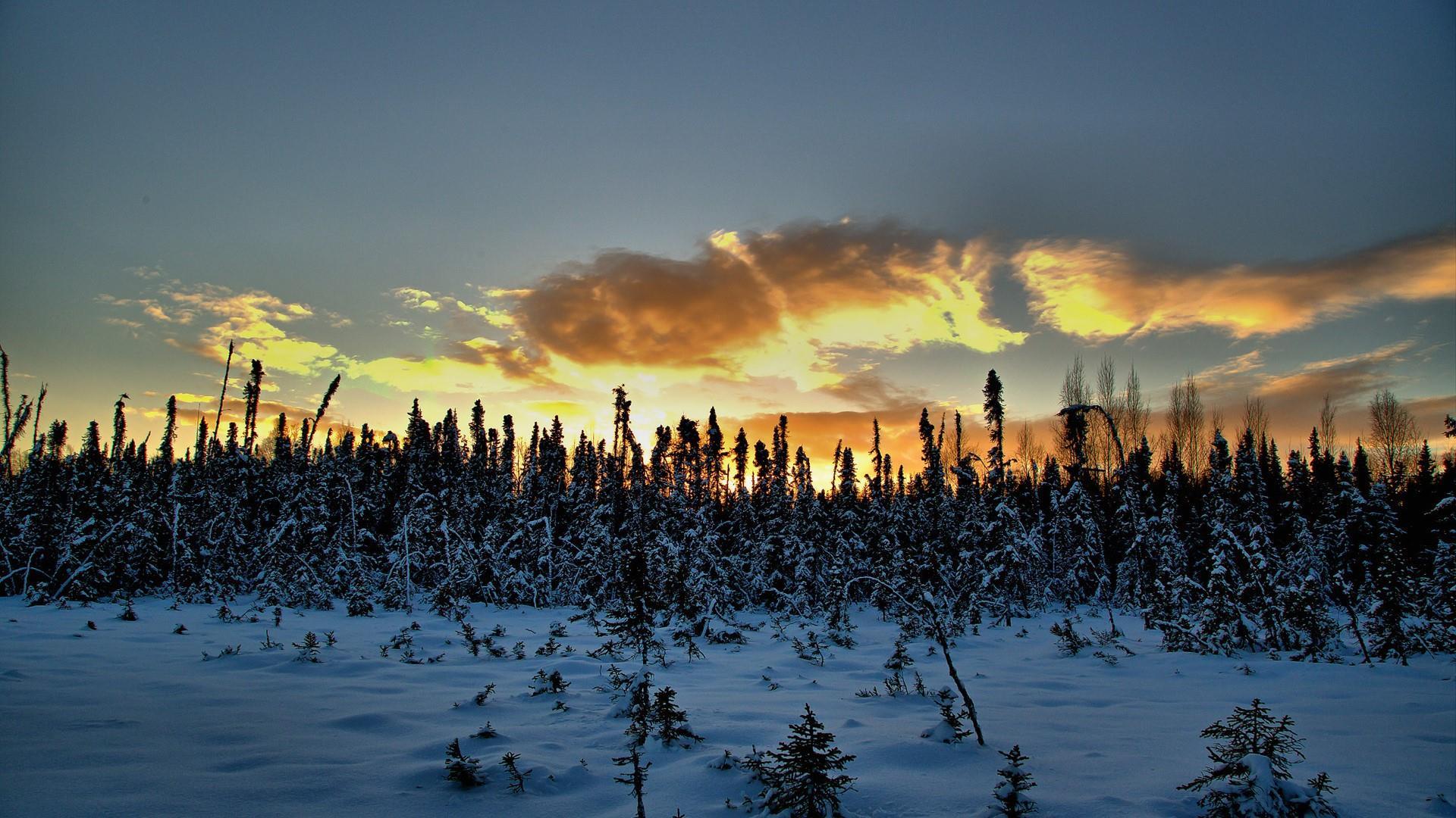 Alaskan winter landscape wallpaper