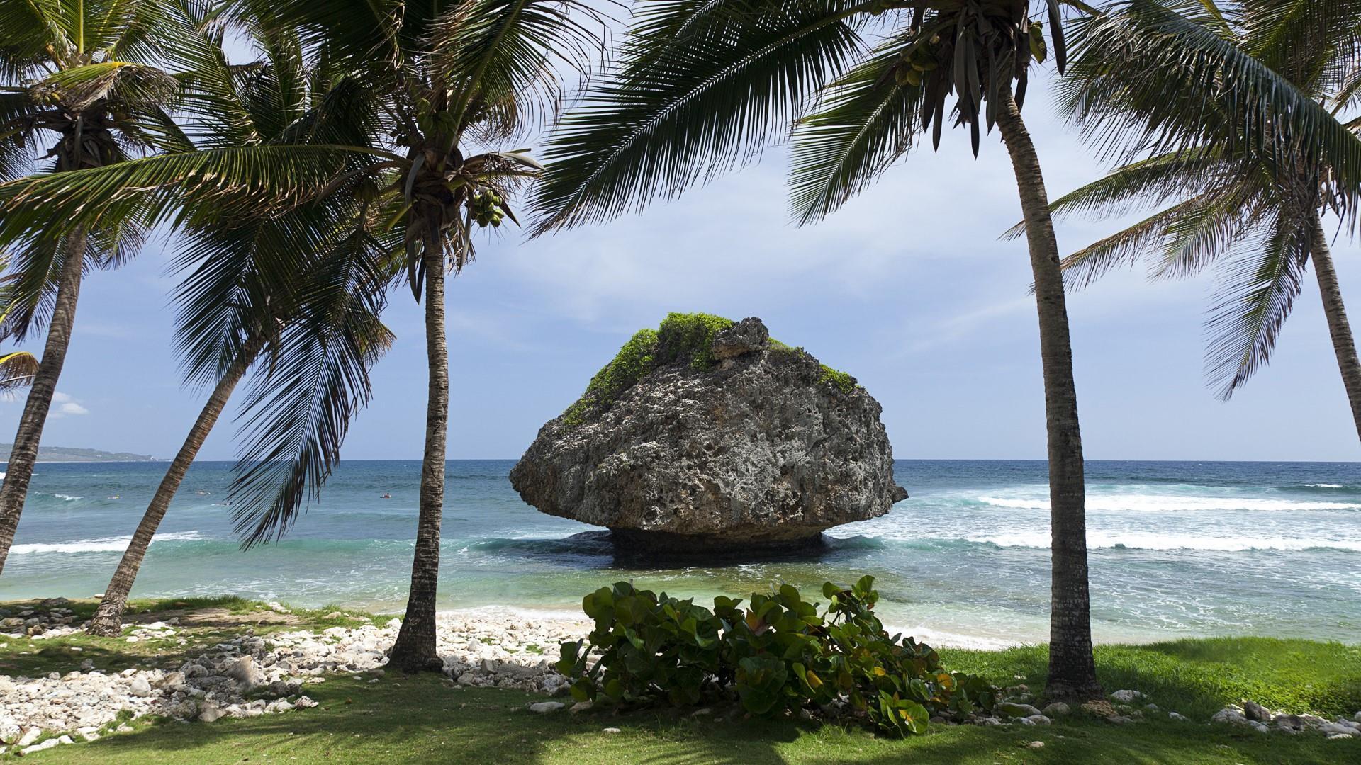 Mushroom rock - Bathsheba Beach, Barbados wallpaper