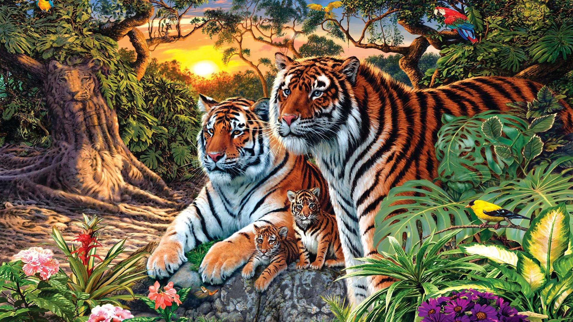 More than a tiger family in the jungel... wallpaper
