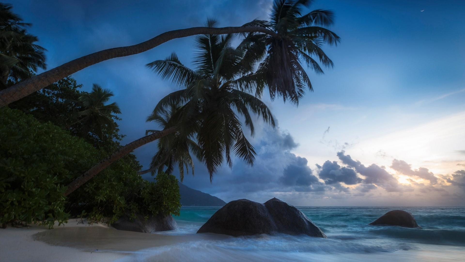 Summer evening in the paradise wallpaper