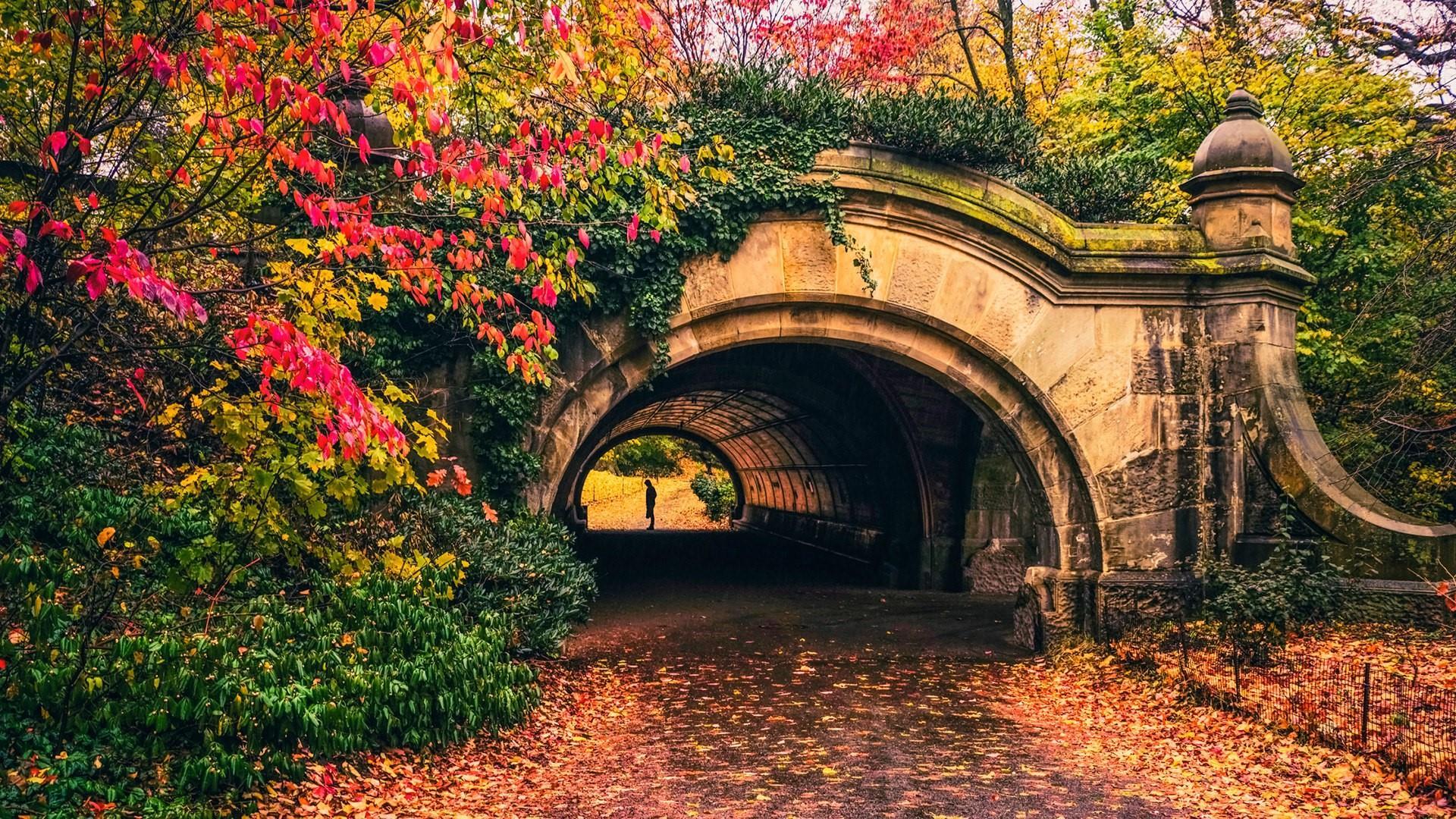 Autumn Prospect Park Passage - Brooklyn wallpaper
