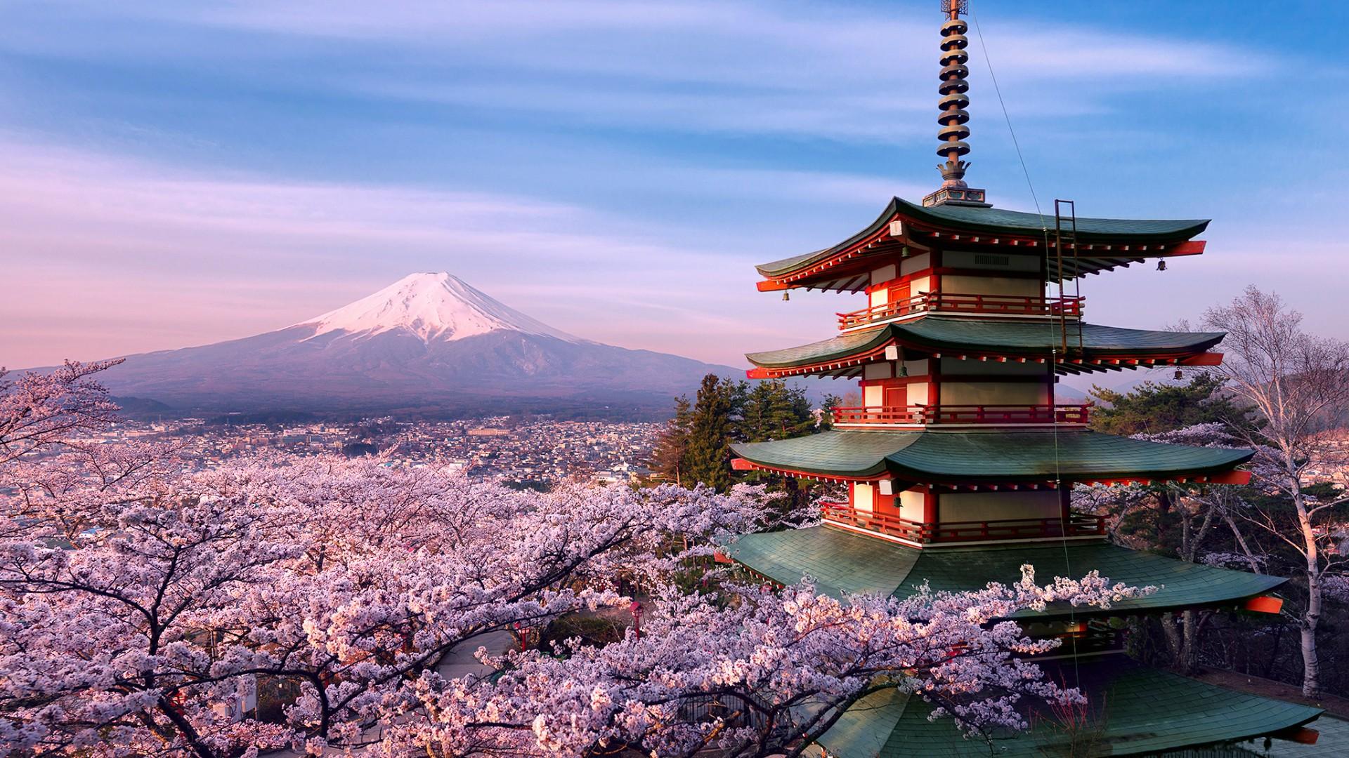 Mount Fuji volcano and Chureito Pagoda wallpaper