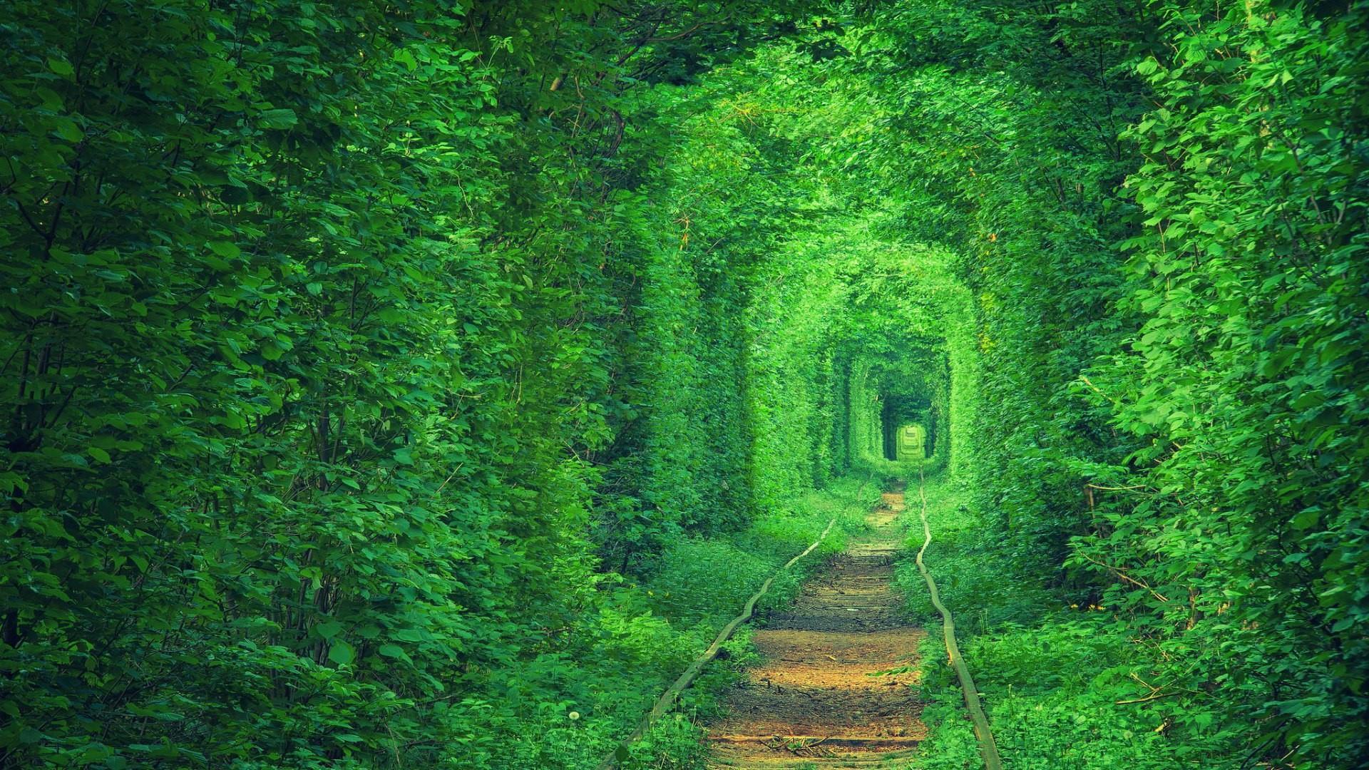 Tunnel of Love (Tunel Kokhannya) wallpaper