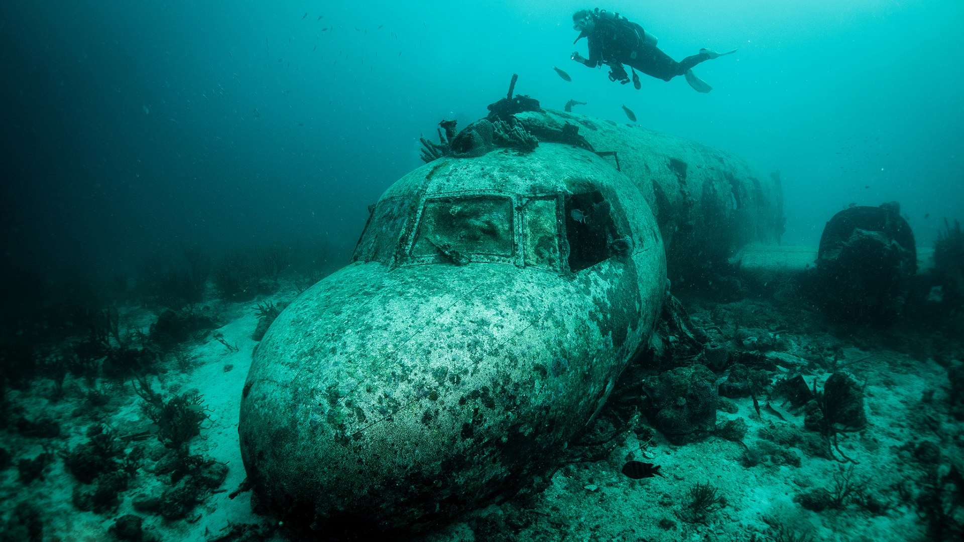 Underwater airplane wreck wallpaper