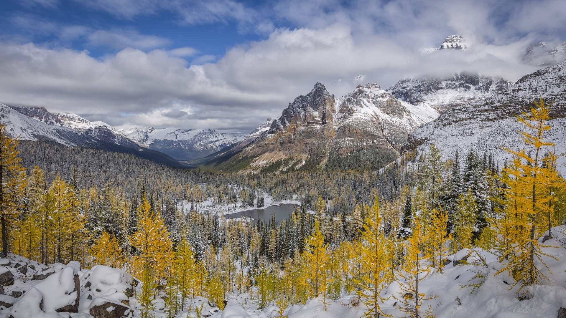 Early snow in the Yoho National Park wallpaper