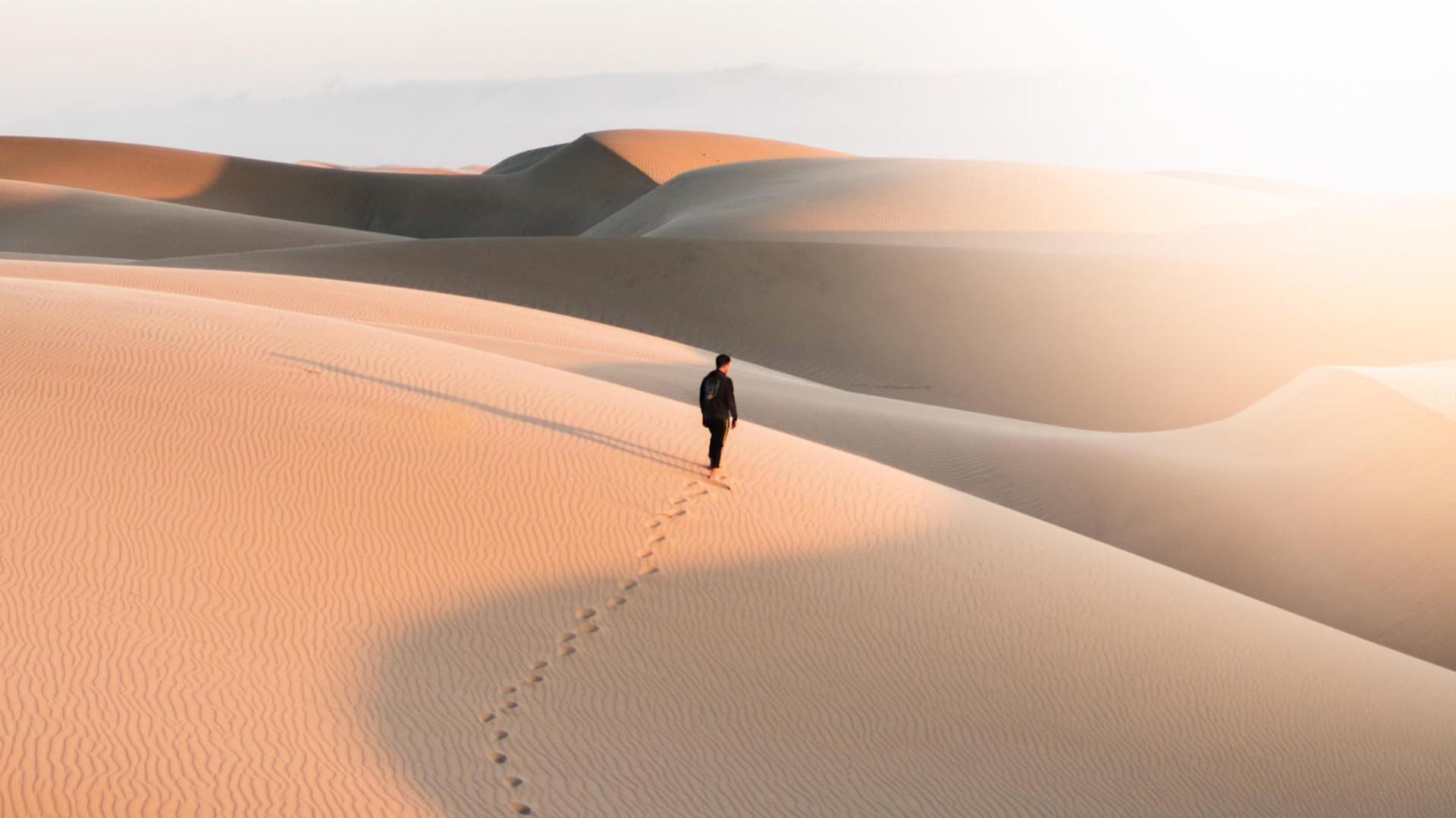 Alone in the desert wallpaper